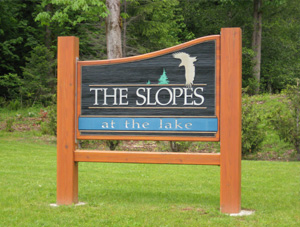 the Slopes Lots for Sale Lake Cowichan